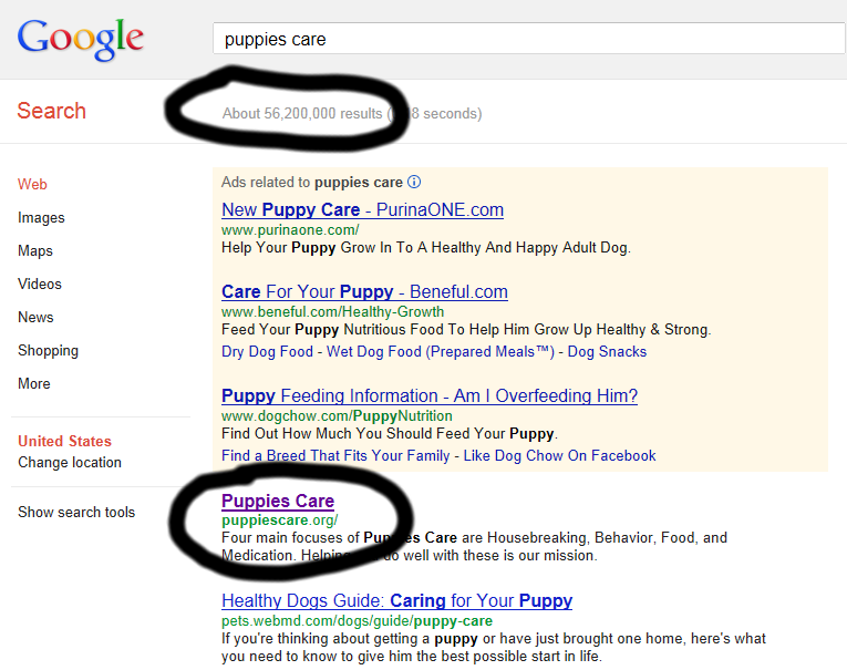 Google PuppiesCare Search Screenshot December 17,2012