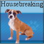 Housebreaking and Potty Training